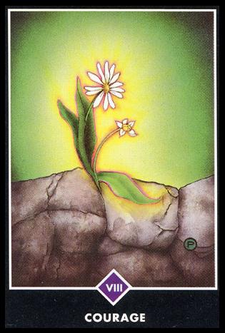 Ý nghĩa lá VIII. Courage trong bộ bài Osho Zen Tarot
