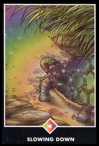 Ý nghĩa lá Knight of Rainbows trong bộ bài Osho Zen Tarot