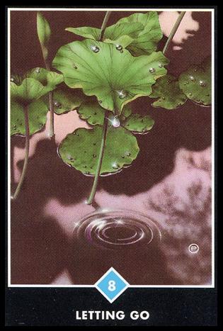 Ý nghĩa lá 8 of Water trong bộ bài Osho Zen Tarot