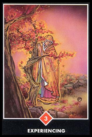 Ý nghĩa lá 3 of Fire trong bộ bài Osho Zen Tarot