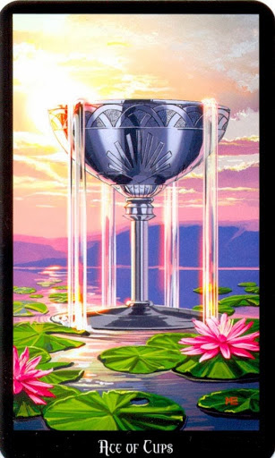 Lá Ace of Cups – Witches Tarot