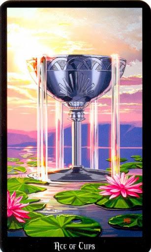 Ý nghĩa lá Ace of Cups trong bộ bài Witches Tarot