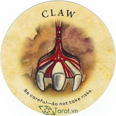 Ý nghĩa lá Claw trong bộ bài Tea Leaf Fortune Cards