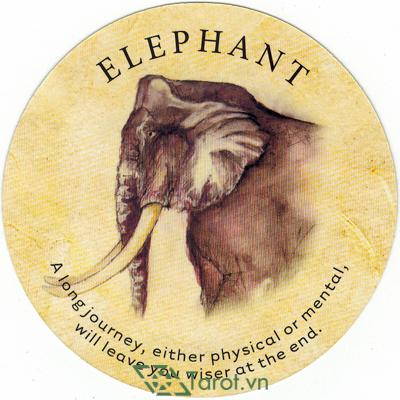 Ý nghĩa lá Elephant trong bộ bài Tea Leaf Fortune Cards