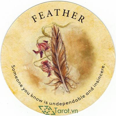 Ý nghĩa lá Feather trong bộ bài Tea Leaf Fortune Cards