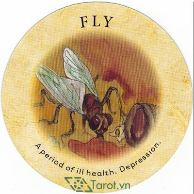 Tea Leaf Fortune Cards - Sách Hướng Dẫn Bói Trà 78