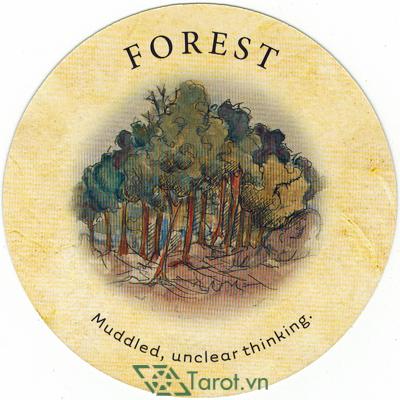Ý nghĩa lá Forest trong bộ bài Tea Leaf Fortune Cards