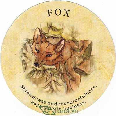 Tea Leaf Fortune Cards - Sách Hướng Dẫn Bói Trà 81