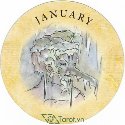 Tea Leaf Fortune Cards - Sách Hướng Dẫn Bói Trà 183