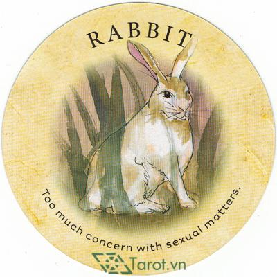 Ý nghĩa lá Rabbit trong bộ bài Tea Leaf Fortune Cards