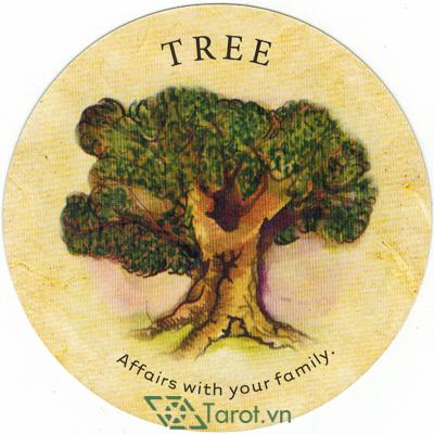 Tea Leaf Fortune Cards - Sách Hướng Dẫn Bói Trà 161