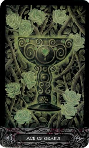Ý nghĩa lá bài Ace of Grails trong bộ bài Tarot of Vampyres