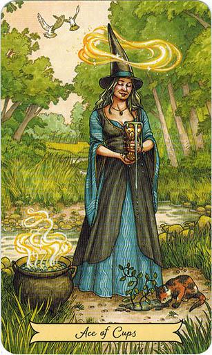 Ý nghĩa lá Ace of Cups trong bộ bài Everyday Witch Tarot