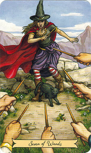 Lá Seven of Wands - Everyday Witch Tarot 1