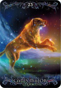 Lá 23. Canis Major – Astrology Oracle Cards 1