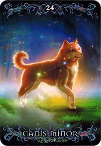 Astrology Oracle Cards - Sách Hướng Dẫn 24
