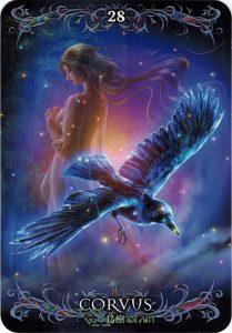 Lá 28. Corvus – Astrology Oracle Cards 1