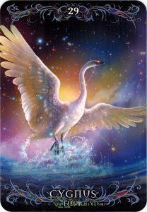 Astrology Oracle Cards - Sách Hướng Dẫn 29