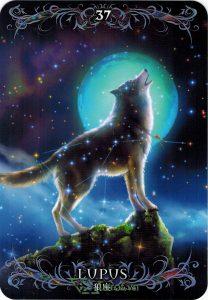 Lá 37. Lupus – Astrology Oracle Cards 1