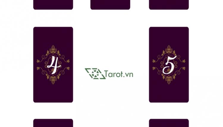 Trải Bài Tarot – Suy Ngẫm Trong Chuyến Dã Ngoại