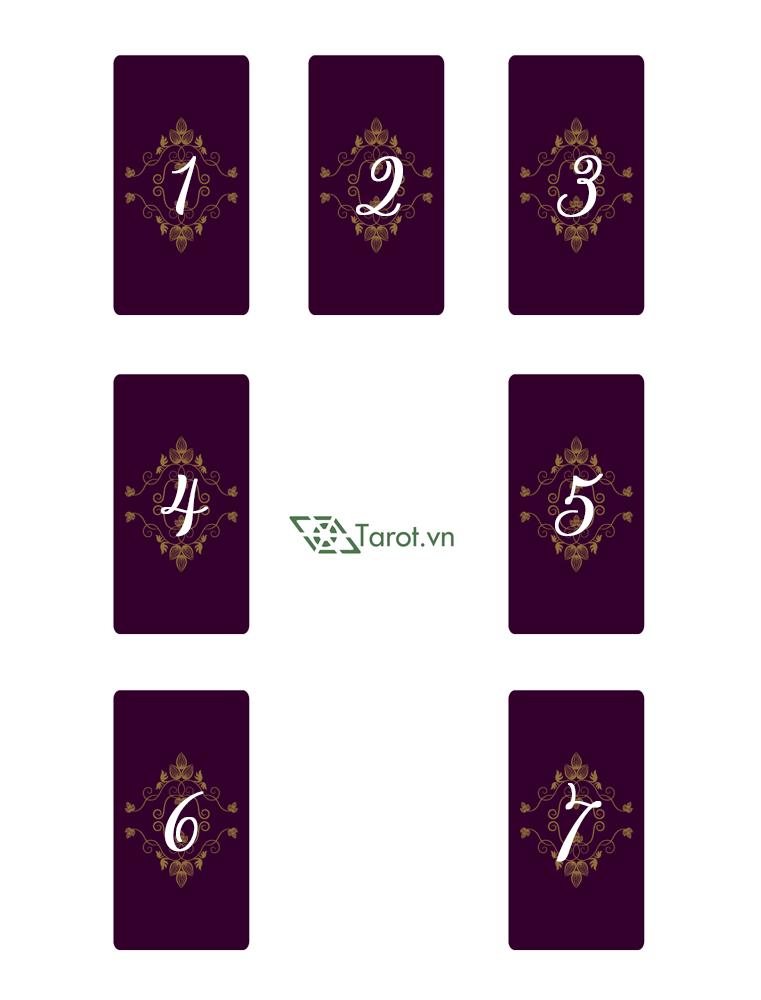 Trải Bài Tarot - Suy Ngẫm Trong Chuyến Dã Ngoại 1