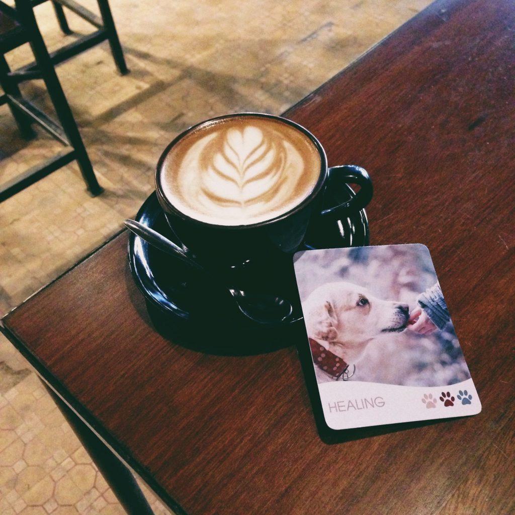 Hãy tự cứu lấy mình, giải thoát bản thân mình khỏi những mối quan hệ độc hại.<br /> Ảnh: Nguyễn Hiếy, bộ bài: The Pet Oracle Cards (Handmade deck)