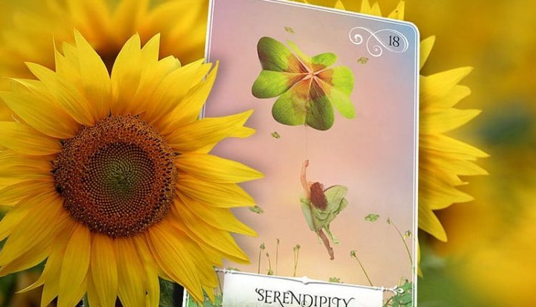 Wisdom Of The Oracle Divination Cards – Lá Số 18: Serendipity