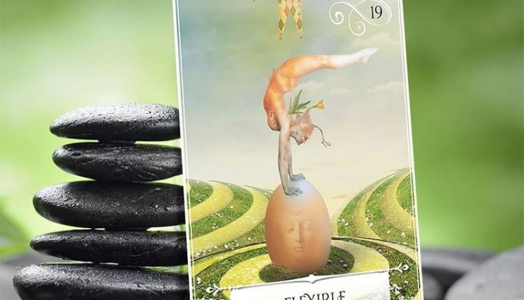 Wisdom Of The Oracle Divination Cards – Lá Số 19: Flexible