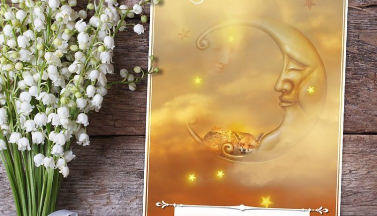Wisdom Of The Oracle Divination Cards – Lá Số 24: Time For A Nap