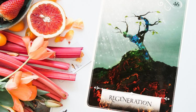 Wisdom Of The Oracle Divination Cards – Lá Số 46: Regeneration