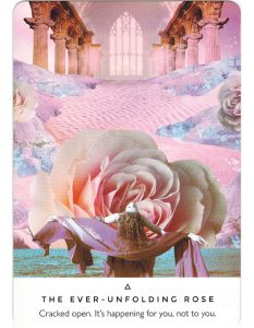 Work Your Light Oracle - The Ever Unfolding Rose 1