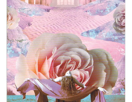 Work Your Light Oracle – The Ever Unfolding Rose