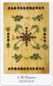 The Herbcrafter's Tarot - Sách Hướng Dẫn 5