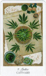 The Herbcrafter's Tarot - Sách Hướng Dẫn 12