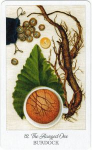 The Herbcrafter's Tarot - Sách Hướng Dẫn 13