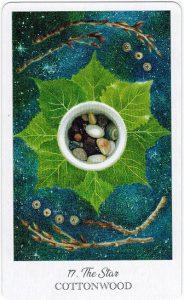The Herbcrafter's Tarot - Sách Hướng Dẫn 18