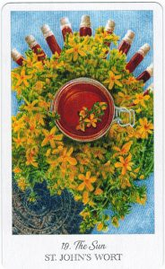 The Herbcrafter's Tarot - Sách Hướng Dẫn 20