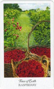 The Herbcrafter's Tarot - Sách Hướng Dẫn 34