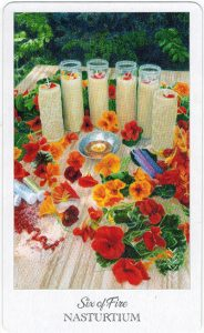 The Herbcrafter's Tarot - Sách Hướng Dẫn 44