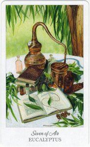 The Herbcrafter's Tarot - Sách Hướng Dẫn 47