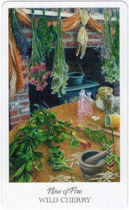 The Herbcrafter's Tarot - Sách Hướng Dẫn 56