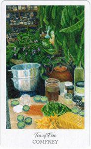 The Herbcrafter's Tarot - Sách Hướng Dẫn 60