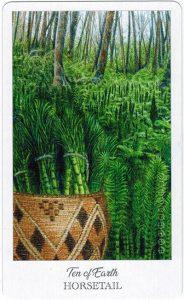 The Herbcrafter's Tarot - Sách Hướng Dẫn 62