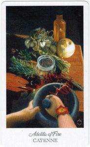 The Herbcrafter's Tarot - Sách Hướng Dẫn 68