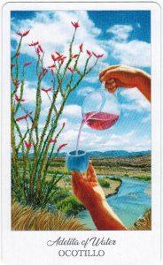 The Herbcrafter's Tarot - Sách Hướng Dẫn 69