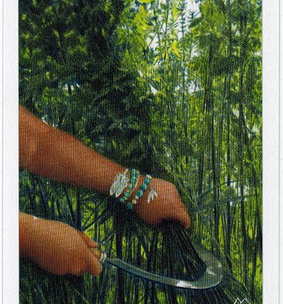 The Herbcrafter's Tarot – Madre Of Air