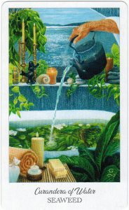 The Herbcrafter's Tarot – Curandera Of Water 1